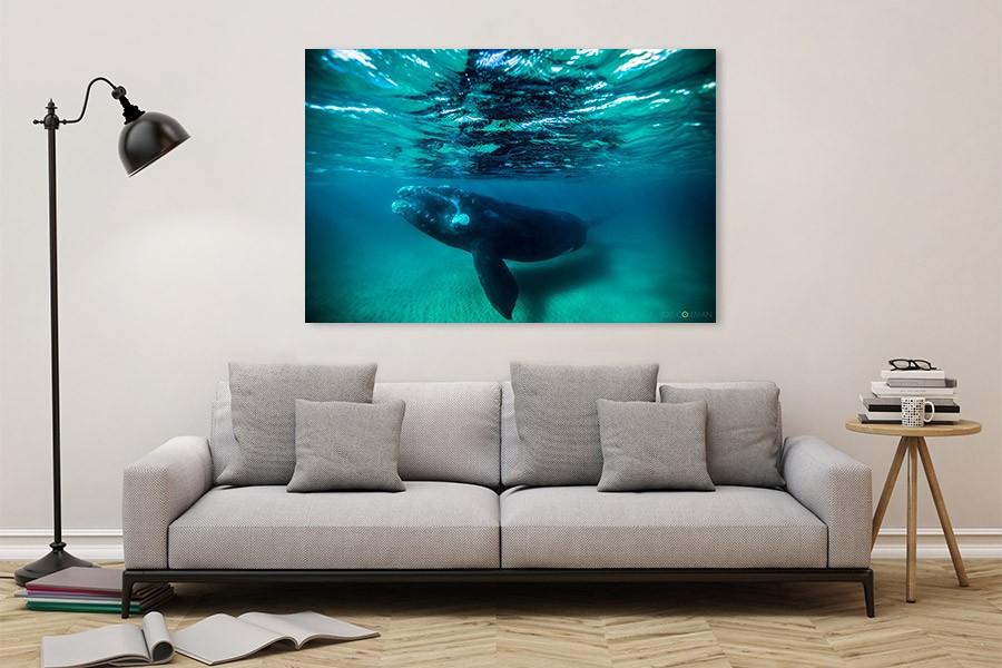 24-living-room